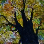 Image of a collaged tree