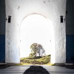 Image: a passageway with an arch at the end, opening up to show a tree in the background