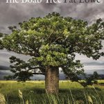 Book cover of The Boab Tree by Pat Lowe
