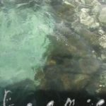 Book cover of foam:e Issue 16