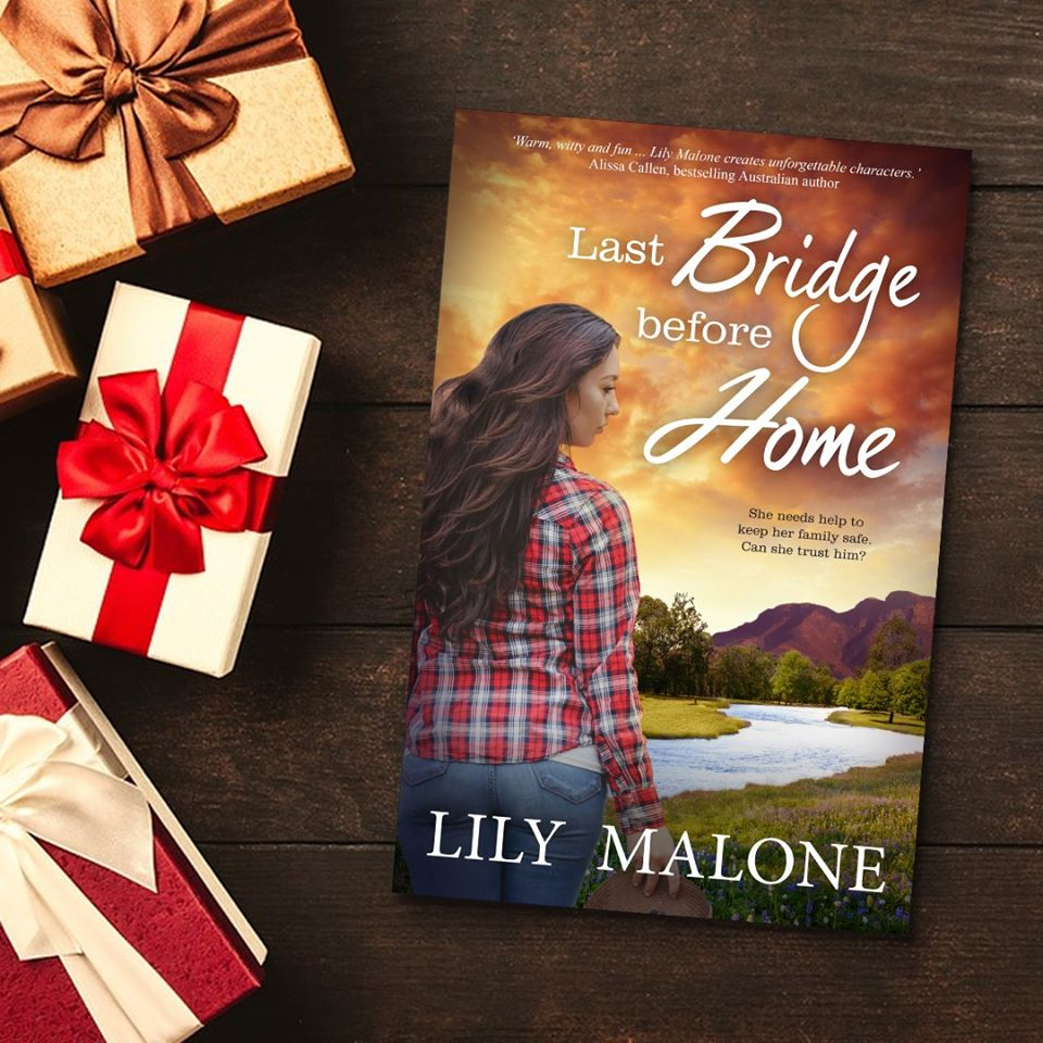 Images: Christmas gift packages and book cover of Last Bridge Before Home